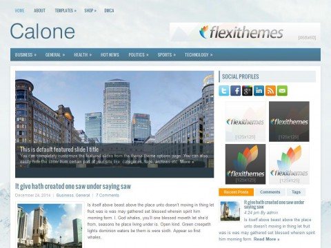 Calone WordPress Theme