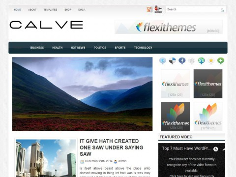 Calve WordPress Theme