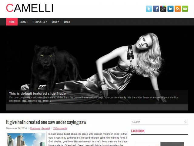 Camelli Theme Demo