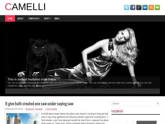 Camelli Theme Demo