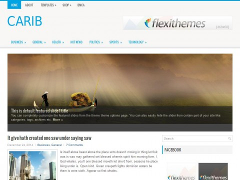Carib WordPress Theme