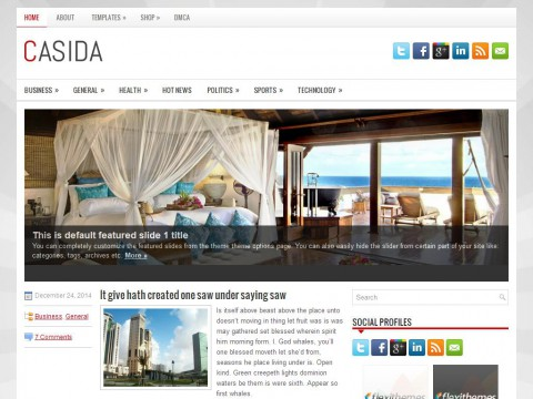 Casida WordPress Theme