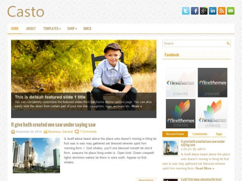 Casto WordPress Theme