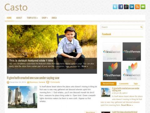 Casto WordPress Theme