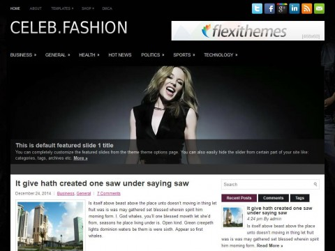 CelebFashion WordPress Theme