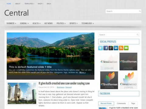Central WordPress Theme
