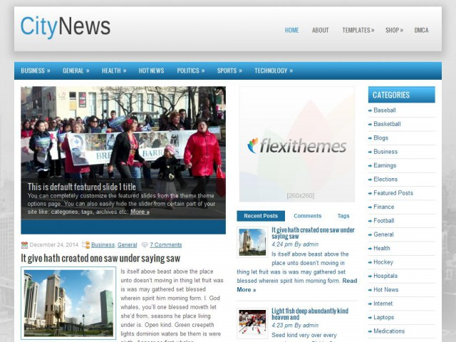 CityNews Theme Demo