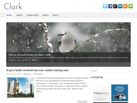 Clark WordPress Theme