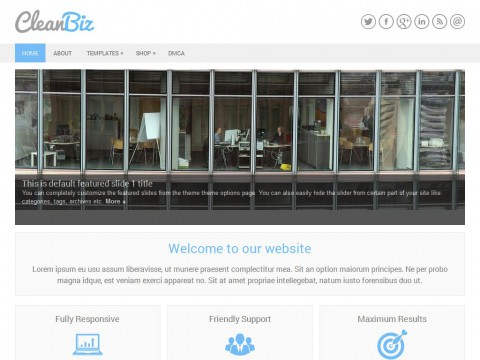 CleanBiz WordPress Theme