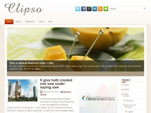 Clipso WordPress Theme