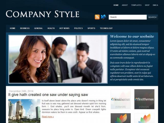 Company Style Blue Theme Demo