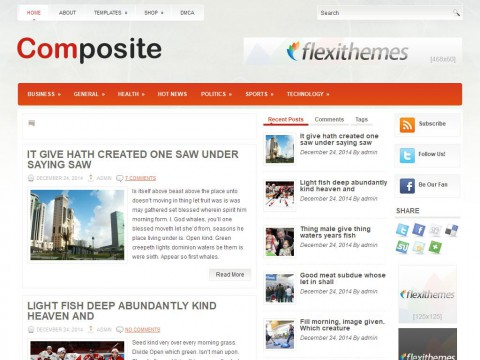 Composite WordPress Theme