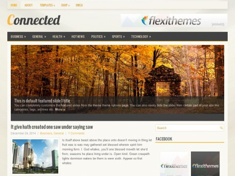 Connected WordPress Theme