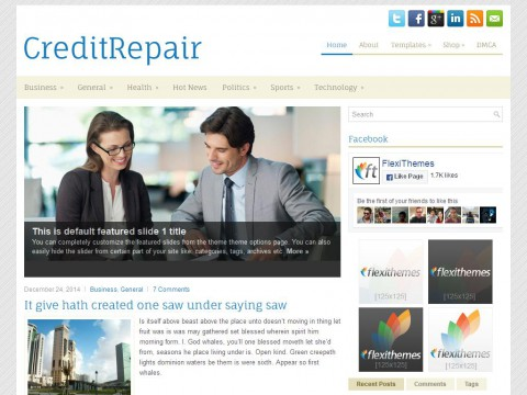 CreditRepair WordPress Theme