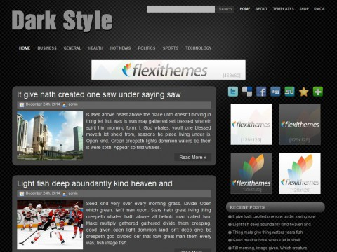 Dark Style WordPress Theme