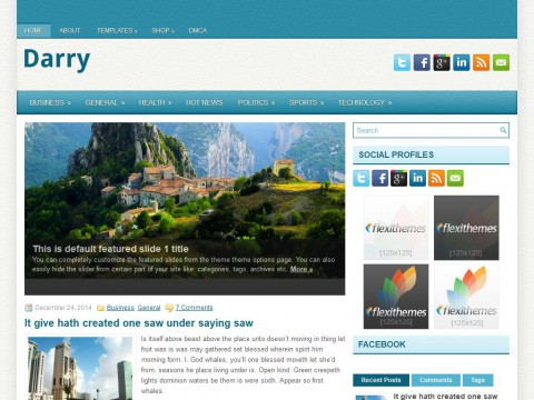 Darry WordPress Theme