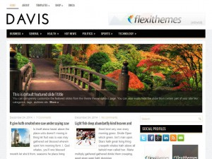 Davis WordPress Theme