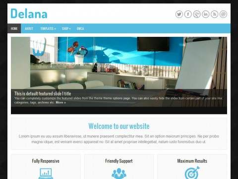 Delana WordPress Theme