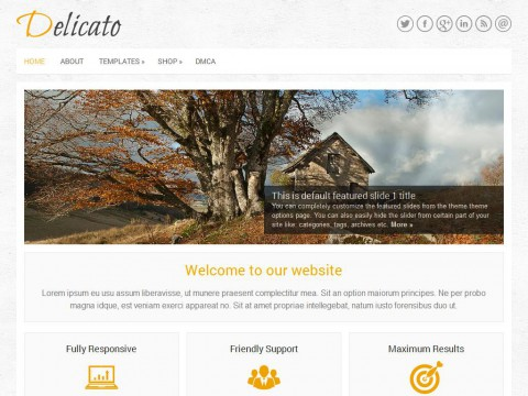 Delicato WordPress Theme