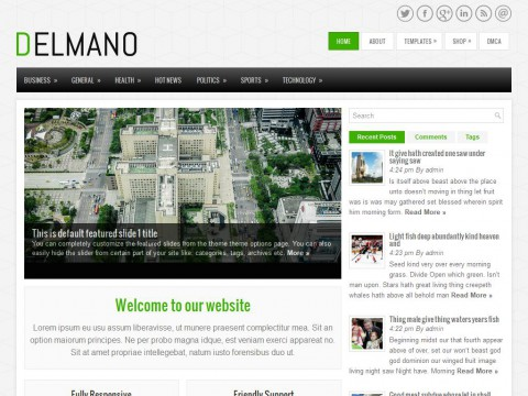Delmano WordPress Theme