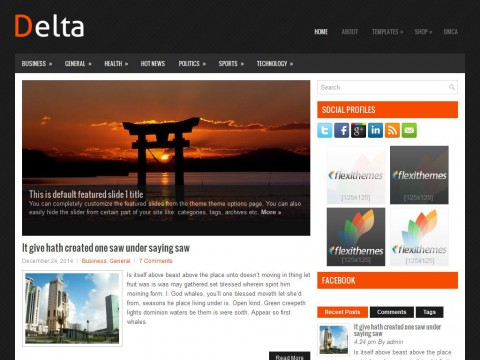 Delta WordPress Theme