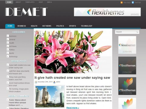 Demet WordPress Theme
