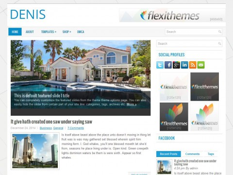 Denis WordPress Theme