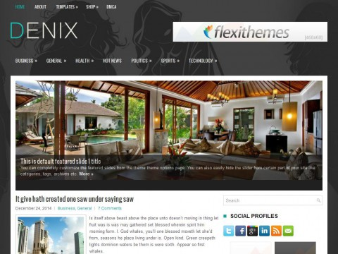 Denix WordPress Theme