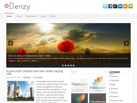 Denzy WordPress Theme