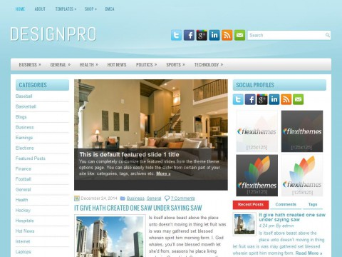 DesignPro WordPress Theme