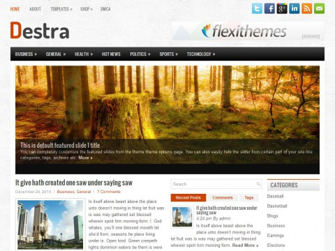 Destra WordPress Theme