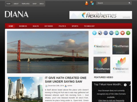 Diana WordPress Theme
