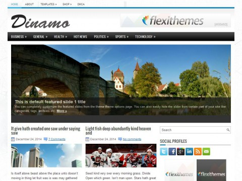 Dinamo WordPress Theme