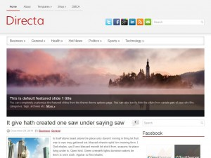 Directa WordPress Theme