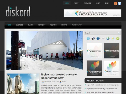 Diskord WordPress Theme