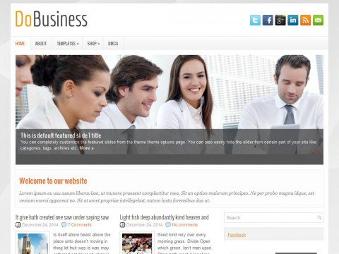 DoBusiness WordPress Theme