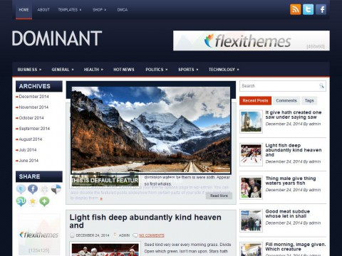 Dominant WordPress Theme