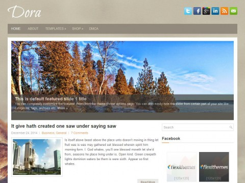 Dora WordPress Theme