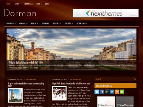 Dorman WordPress Theme