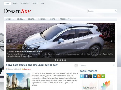 DreamSuv WordPress Theme