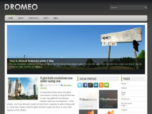 Dromeo WordPress Theme