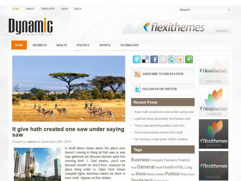 Dynamic - A Free General/Blog WordPress Theme by FlexiThemes