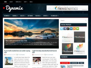 Dynamix | More Details