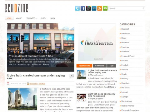 EchoZine WordPress Theme