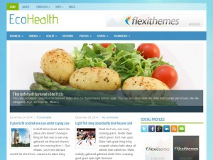 EcoHealth WordPress Theme