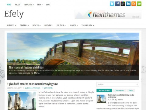 Efely WordPress Theme