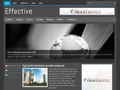 Effective WordPress Theme