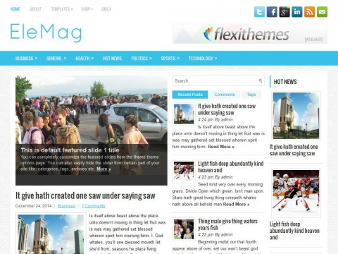 EleMag WordPress Theme