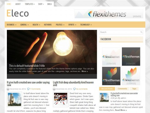 Eleco WordPress Theme