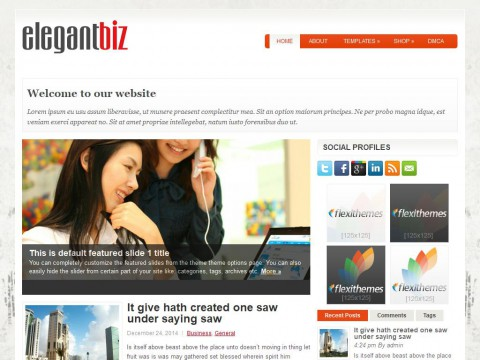ElegantBiz WordPress Theme
